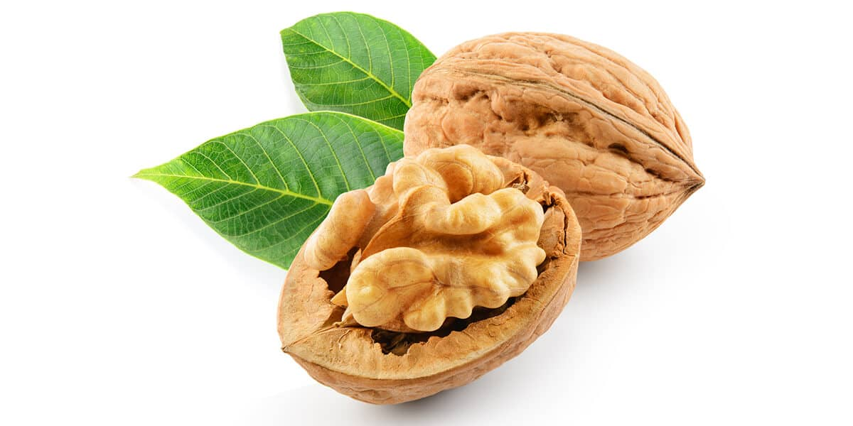 Healthy Food for Kids: Walnuts